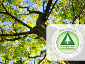 Busseys Tree Planting Initiative