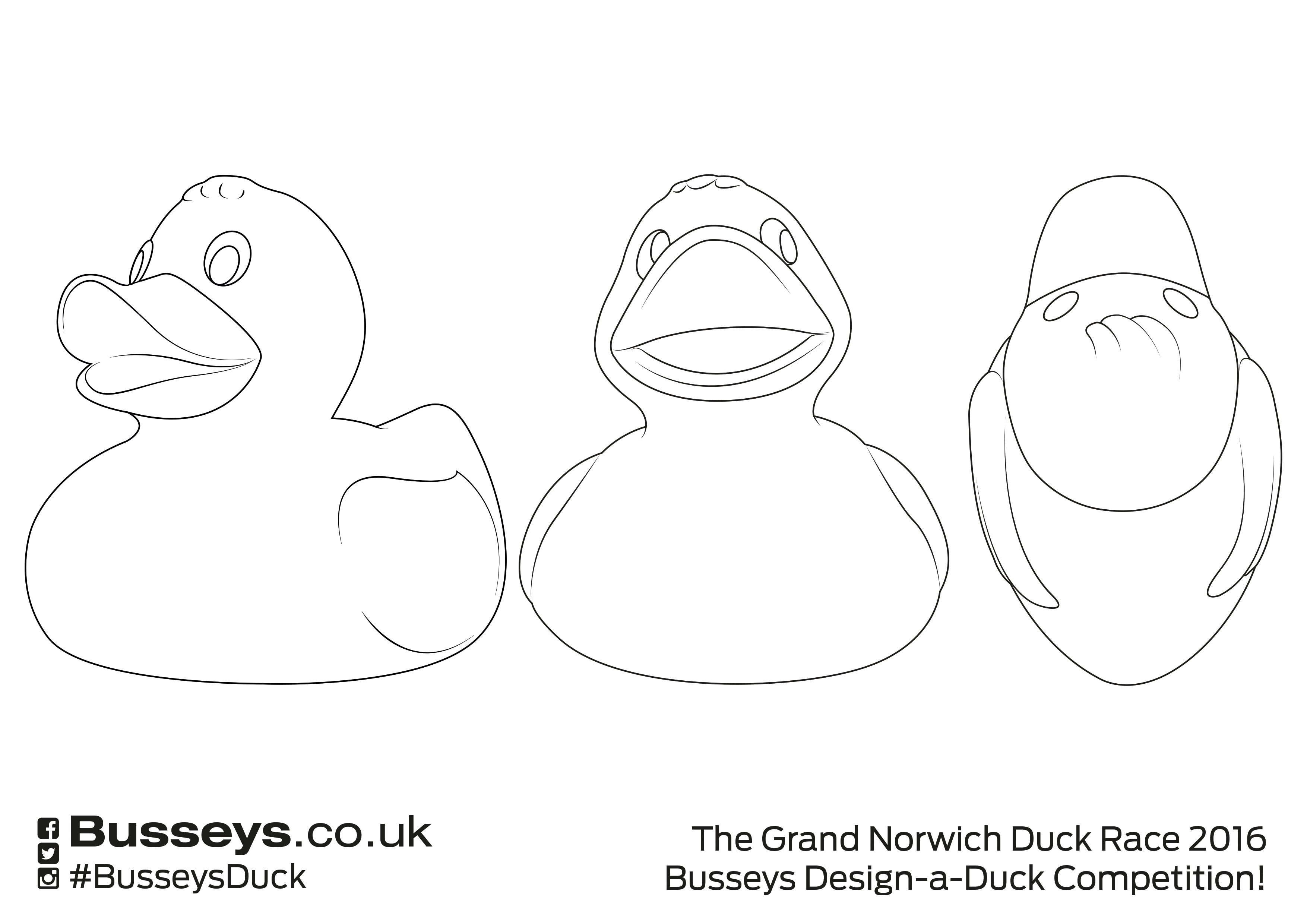 Busseys Design A Duck Competition Entry Form